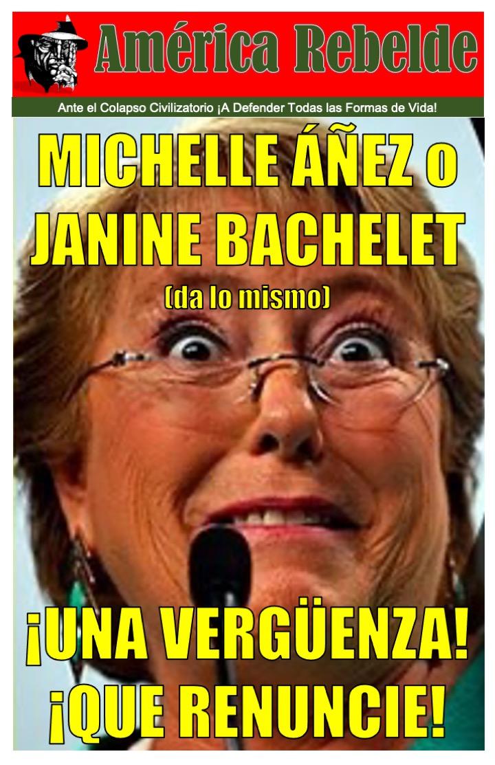 MICHELLE ÁÑEZ O JANINE BACHELET:  UNA VERGÜENZA